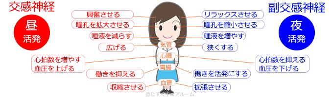 須賀川市の整体院sasukeneの産後の骨盤矯正